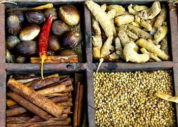 The Grand Masala: Kerala Fish Curry