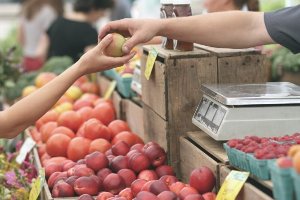 The Benefits of Purchasing Locally Grown Products