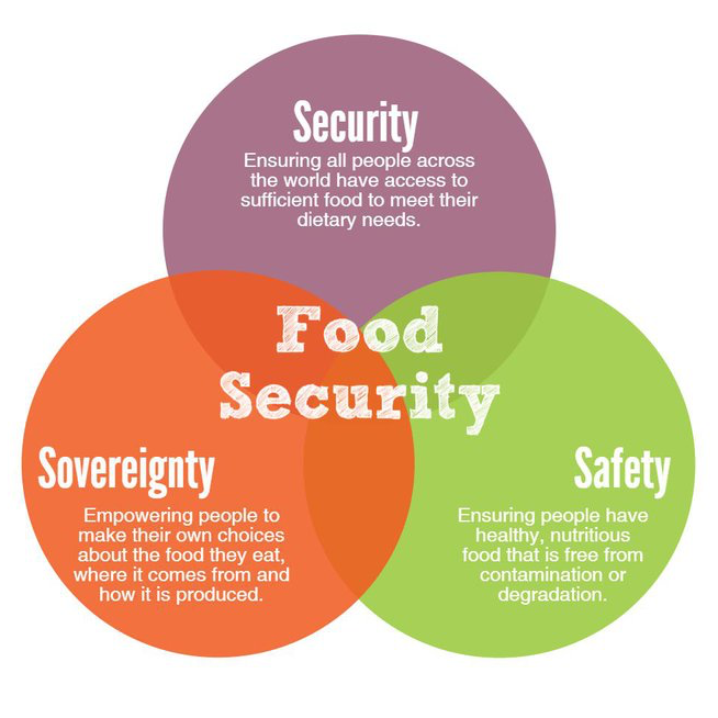 Food Insecurity & Sustainable Agriculture